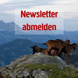 Newsletter abmelden